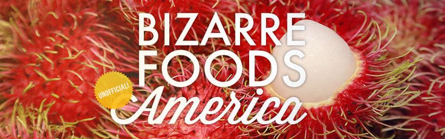 Bizarre foods unofficial banner 8e98f8bf c126 428e a3d0 868b9727740a