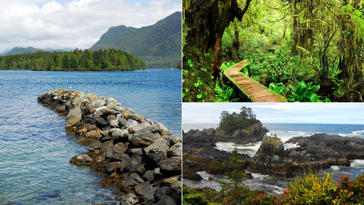 Established in 1970, Pacific Rim National Park is a spellbinding natural wonderland