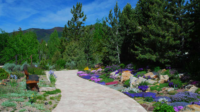 Betty Ford Alpine Gardens Vail Co Roadtrippers
