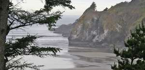 Tyee Lodge Oceanfront Bed & Breakfast