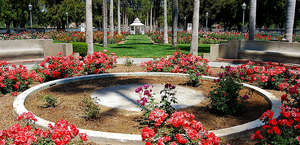 Fairmount Park Rose Garden