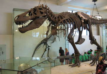 Sternberg Museum of Natural History