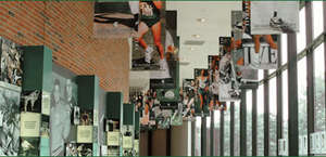 Michigan State University - Athletics Hall of Fame