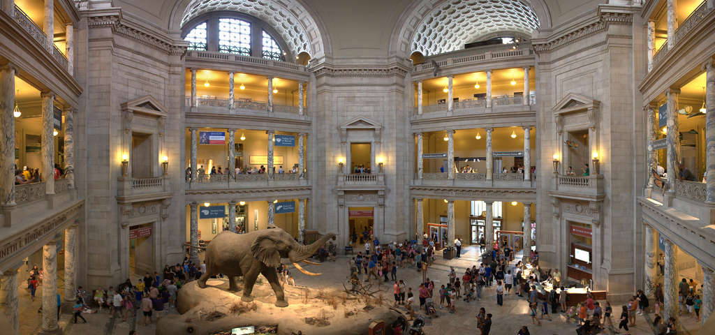 Permanent Exhibits. Rotunda North. Select Past Exhibits. Western Cultures. Other NMNH and SI Tours. MSC Wet Specimens.
