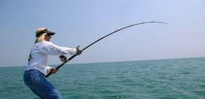 Captain K's Fishing Charters