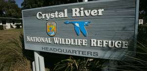 Crystal River National Wildlife Refuge