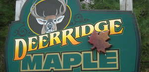 Deer Ridge Maple