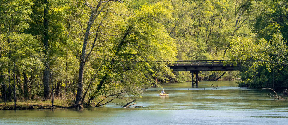 A complete guide to fishing your way through the South