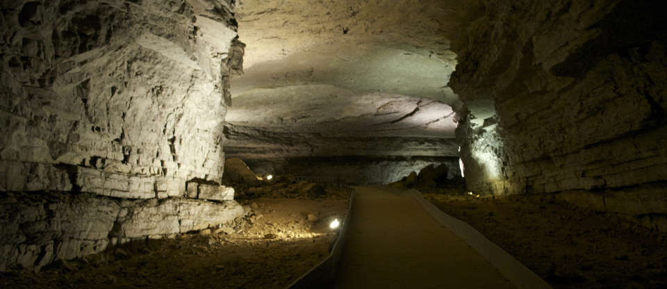 The Ultimate Guide To Mammoth Cave National Park