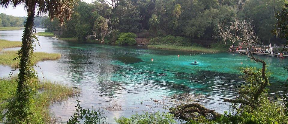 The Best Kept Secret Swimming Holes Of Central Florida