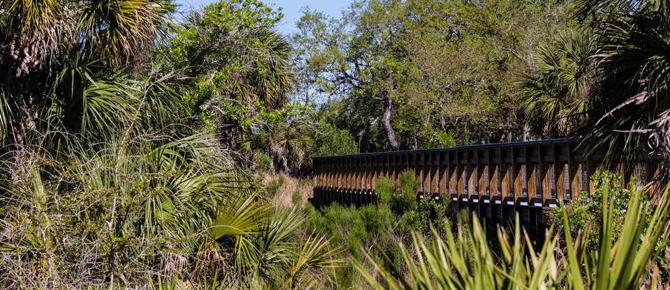 Make unforgettable memories on Florida's Sports Coast