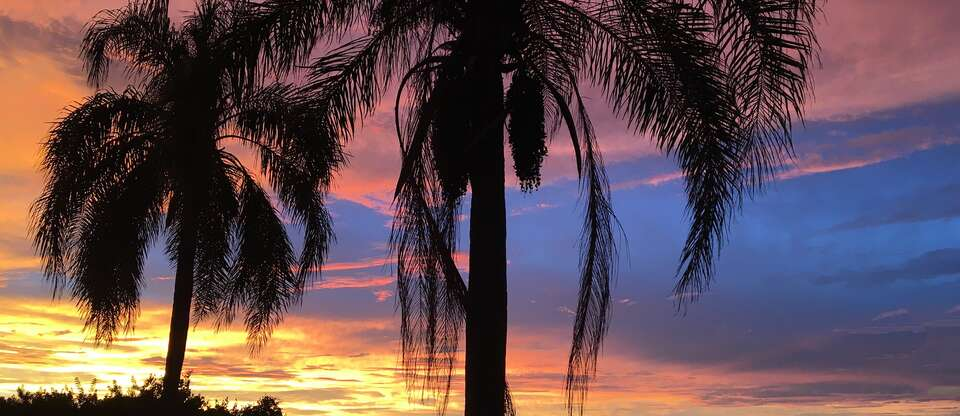 21 DGN SUNSHINE STATE EN DEEP SOUTH ORLANDO RETOUR