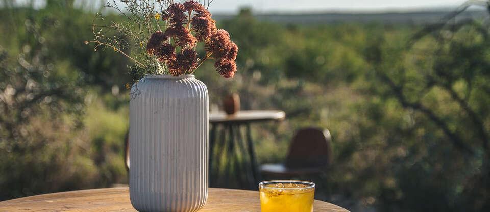 Enjoy Al Fresco Dining & Park Picnics Throughout Tucson